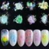 Nail Art Glitter AB Chameleon Colorful Holographic Sequins Flakes Heart /Star/ Flower/Dolphin UV Gel Polish Paillette Decoration